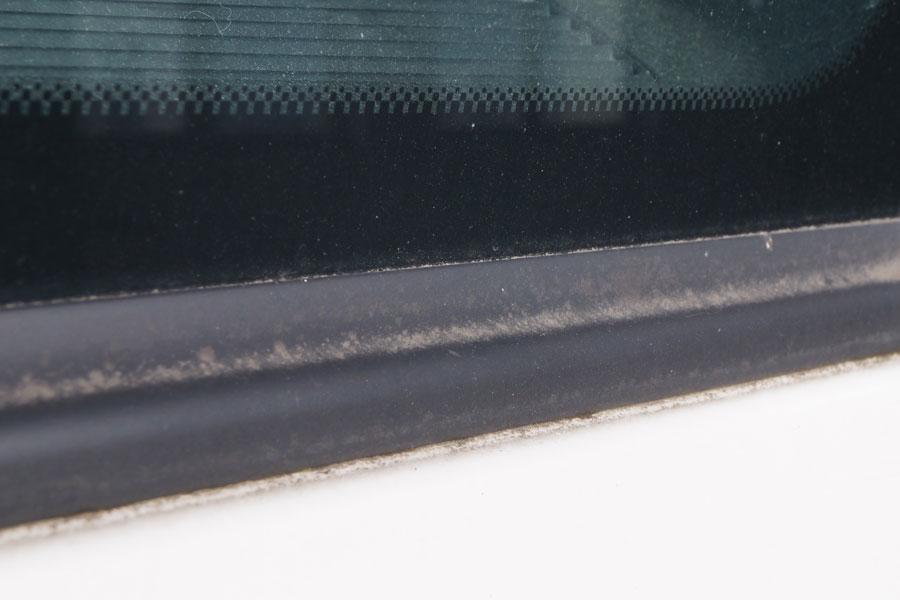 Kunststoffpflege Gummidichtungen von Moos/Grünspan entfernen